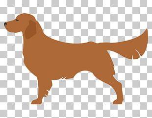 Bedlington Terrier Toy Fox Terrier Bull Terrier Newfoundland Dog Kerry Blue Terrier PNG