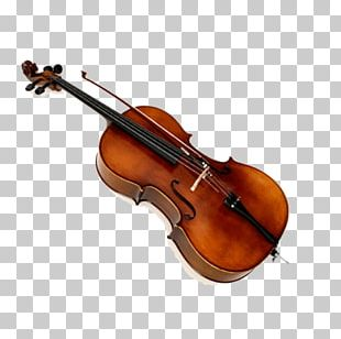Musical Instrument Violin Cello Double Bass String Instrument PNG