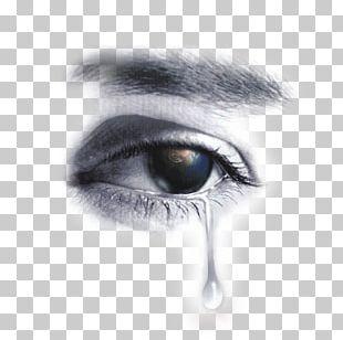 Tears Eye Sadness PNG