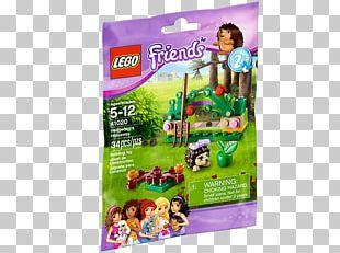 Amazon.com LEGO Friends Hedgehog Lego Minifigure PNG