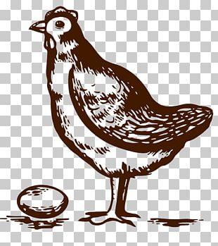 Crispy Fried Chicken Buffalo Wing Omelette PNG