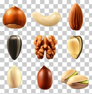 Nucule Mixed Nuts Euclidean Dried Fruit PNG