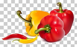 Green Curry Red Curry Bell Pepper Chili Pepper PNG
