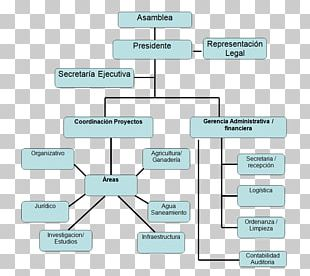Non-profit Organisation Non-Governmental Organisation Organizational Chart Voluntary Association PNG