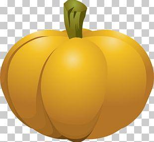 Cucurbita Calabaza Pumpkin Pie PNG