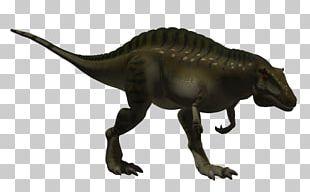 Tyrannosaurus Acrocanthosaurus Altispinax Dinosaur Size Velociraptor PNG
