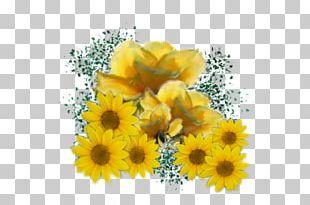 Common Sunflower Yellow Rose Desktop PNG
