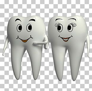 Child Dentistry Tooth Pathology PNG