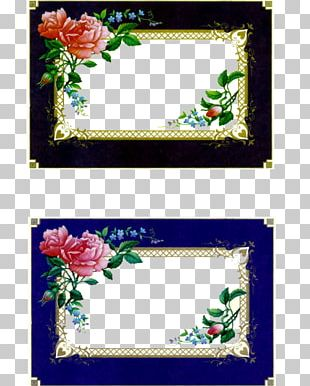Scrapbooking Frames Photography PNG