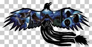 Dragon Beak Feather PNG