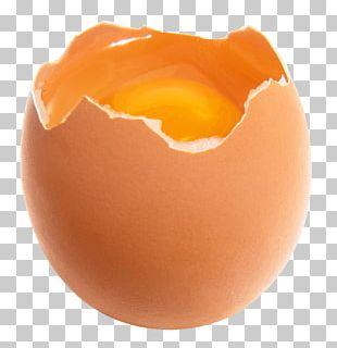 Chicken Egg Yolk PNG