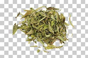 Hōjicha Nilgiri Tea Bancha Sencha Gyokuro PNG