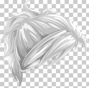 Hair Canities Ponytail PNG