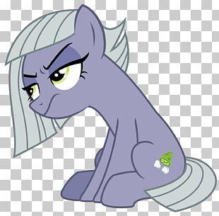 Cat Rainbow Dash Limestone Pony Pinkie Pie PNG