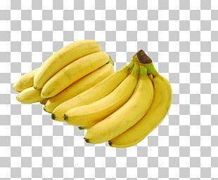China Banana Nutrient Musa Basjoo Food PNG