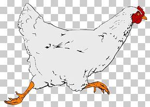 Fried Chicken Fast Food Chicken Nugget Chicken Meat PNG