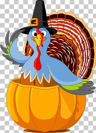 Public Holiday Thanksgiving Day Turkey PNG