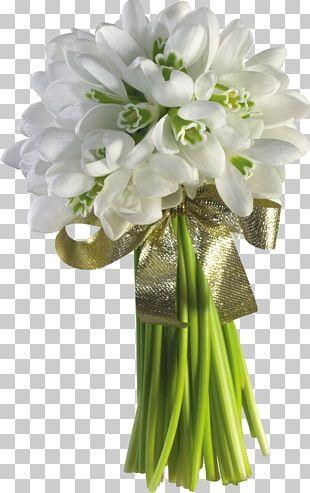 Snowdrop Flower Bouquet Tulip Garden Roses PNG