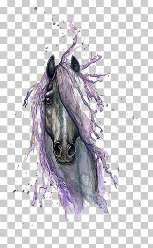 Horse Watercolor Painting Drawing Tattoo PNG