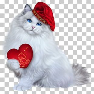 Whiskers Turkish Angora Portable Network Graphics PNG