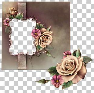 Garden Roses Floral Design Advertising Cut Flowers PNG