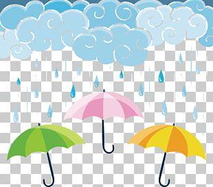 Umbrella Graphic Design Rain PNG