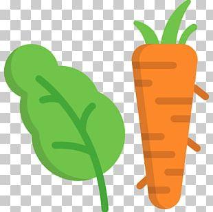 Veggie Burger Organic Food Vegetable Carrot PNG