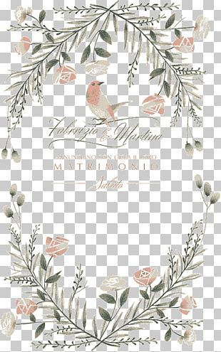 Wedding Invitation Marriage Illustration PNG