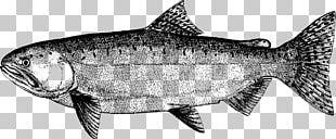 Sardine Fish Products Salmon Cod Milkfish PNG