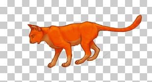 Cats Of The Clans Firestar's Quest Warriors PNG