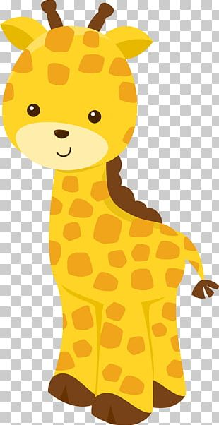 Northern Giraffe Okapi Animal Safari PNG