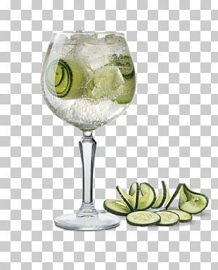 Gin And Tonic Gimlet Cocktail Garnish Rickey Caipirinha PNG