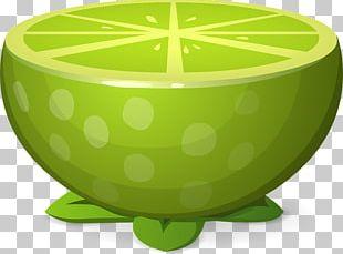 Juice Lemon Key Lime Euclidean PNG