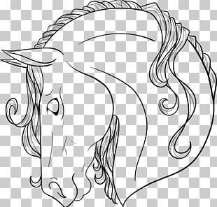 Arabian Horse Mane Line Art American Paint Horse Drawing PNG