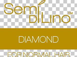 Saulino Smith Salon Cosmetologist Beauty Parlour Hair Business PNG