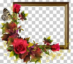 Rose Frame Flower PNG
