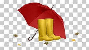 Umbrella Rain Autumn PNG