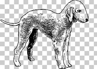 Bedlington Terrier Bull Terrier Boston Terrier Airedale Terrier PNG