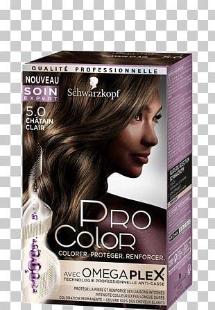 Hair Coloring Human Hair Color Blond Garnier PNG