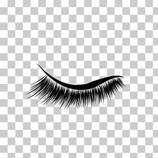 Eyelash Extensions Eyebrow Cosmetics PNG