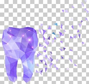 Human Tooth Dentistry Polygon PNG