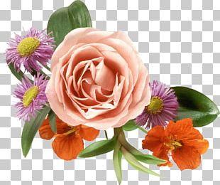 Mother March 8 International Women's Day Girlfriend Birthday PNG