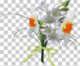 Floral Design Cut Flowers Flower Bouquet PNG