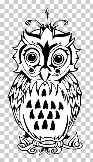 Owl Bird Drawing Visual Arts PNG