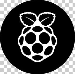 Raspberry Pi Computer Icons Secure Digital PNG