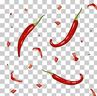 Bird's Eye Chili Tabasco Pepper Cayenne Pepper Chili Pepper PNG