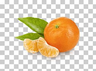 Clementine Mandarin Orange Tangerine Tangelo Bitter Orange PNG