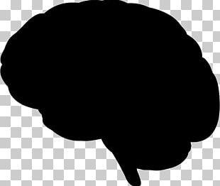 Brain Silhouette Human Head PNG