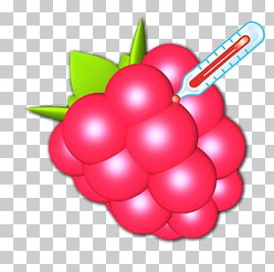 Raspberry Pi Android PNG
