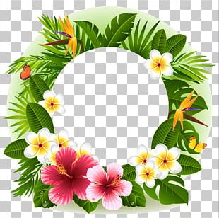 Tropical Flower Decorative Borders PNG